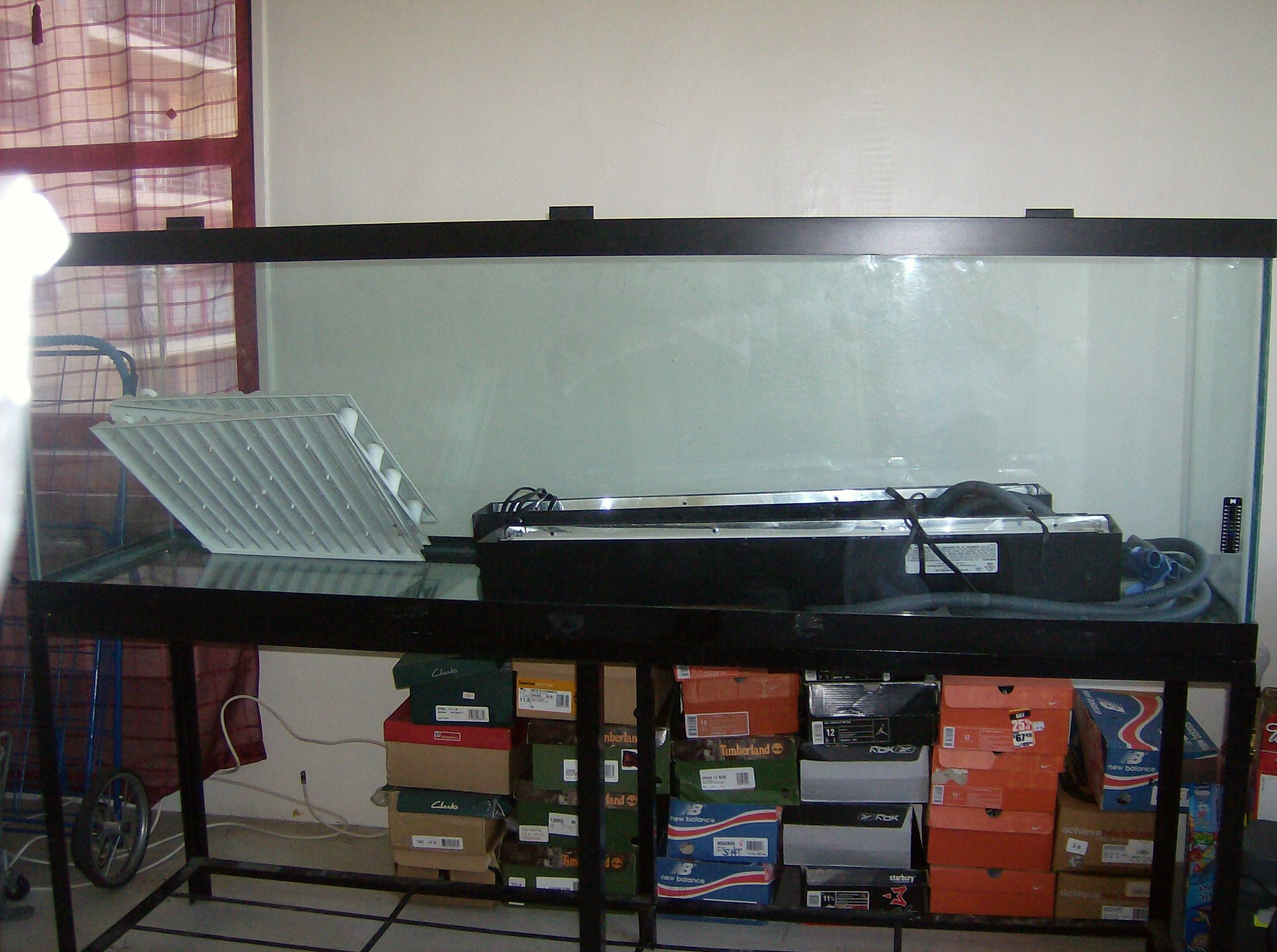 55 gallon fish tank empty weight 55 gallon glass for 125 gallon fish tank